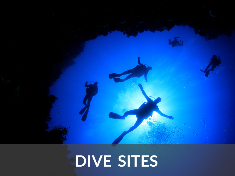 Dive Sites | DIVE LOFT KRK | Croatia