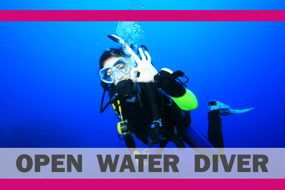 € 15,00 Voucher | IAC OWD Beginners Diving Course